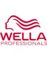 Manufacturer - Wella System Professional